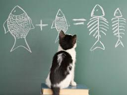 Бесподобная Математика для абитуриентов
