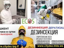 Дезинфекции в Ташкенте, дератизация в Ташкенте, центр дезинф