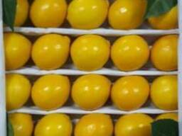 Фрукты и овощи Узбекистана