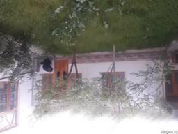 Гостевые дома в Самарканде - фото 2