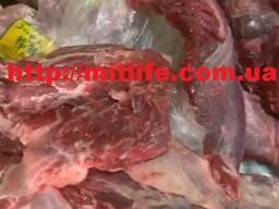Говядина без кости Мясо Украина fca cif fob daf Бык Оптом