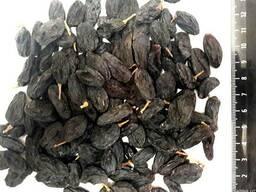 Грецкий орех, курага, чернослив, желтый и черный изюм - фото 4
