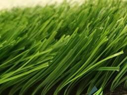Искусственный газон ( искусственная трава) от разных поставщ
