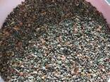 Корм и отходы фасоли - фото 4