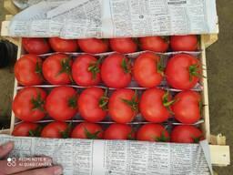 Красный помидоры