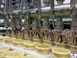 Линия ОЛВ для фасовки и закаливания мороженого (8/12 рядная) - photo 2