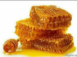 Мёд из Узбекистана
