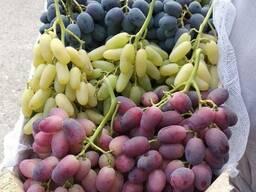 Поставка фруктов, овощей, сухофруктов и зелени всех видов