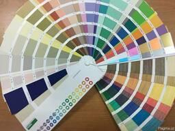 Потрясающий способ покраски стен OIKOS!
