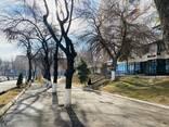 Продам готовый действующий медицинский центр в Ташкенте - photo 1