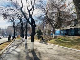 Продам готовый действующий медицинский центр в Ташкенте