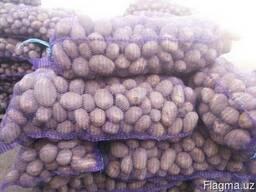 """Продам картофель """"Бриз"""""""