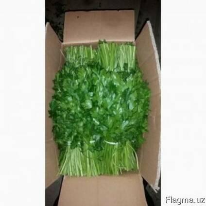 Продаётся Зелень