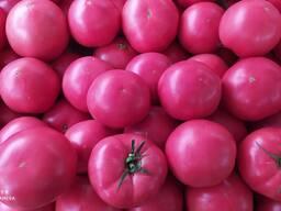 Розовый помидоры