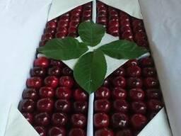 Сельхозпродукты из солнечного Узбекистана