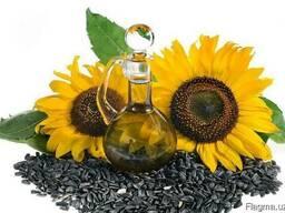 Семена масличных культур(хлопчатник, подсолнух, соя, сафлор)