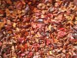 Сухофрукты, сухие овощи и специи - фото 4