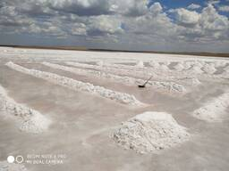Техническая соль. Высший сорт. Содержание NaCl-99, 4%
