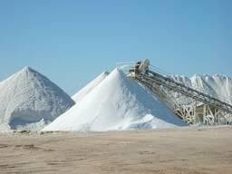 Техническая соль в ассортименте с бесплатной доставкой*