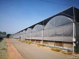 Теплицы Qingzhou Allwin Greenhouse