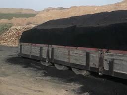 Уголь в Ташкенте