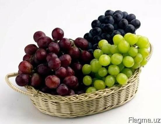 Виноград свежий столовый Кишмиш, Ризамат, Тайфи, Дамский пальчи