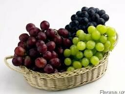 Виноград свежий столовый Кишмиш,Ризамат,Тайфи,Дамский пальчи