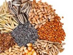 Зерновые, бобовые, масличные