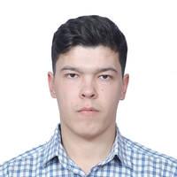 Камалов Дамир Рашидович